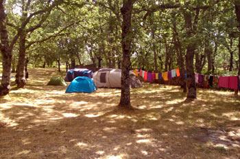 trial-piornal-acampada