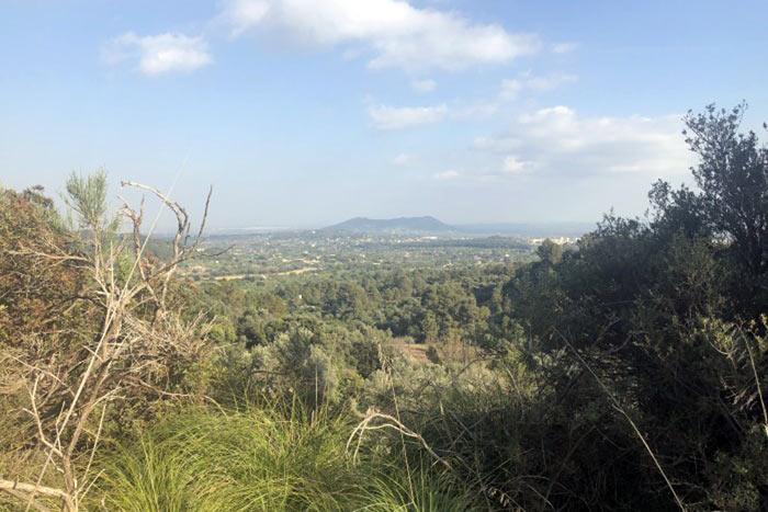Vista-Santa-Magdalena-2DTM