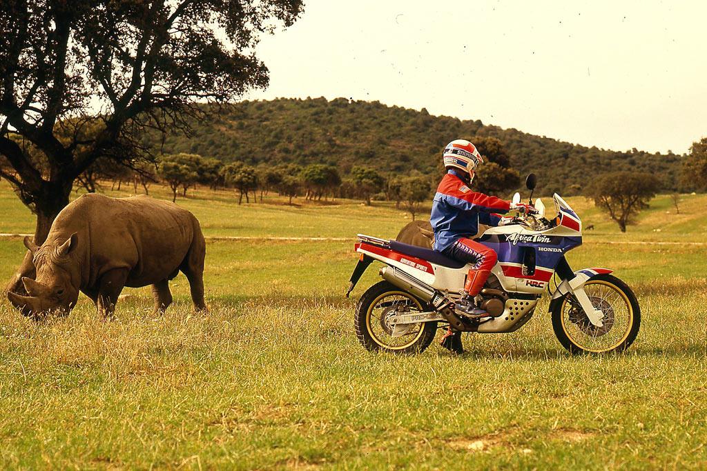 africa twin rinoceronte 2
